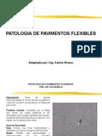 patologia der pavimentos