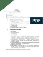 Seminar Audit-probe de Audit -Ana Morariu