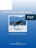 Great Whales Supplement