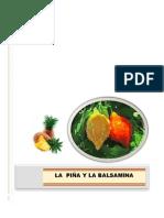 Monografia Piña y Balsamina