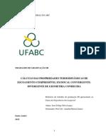 Trabalho de Graduação - Engenharia Aeroespacial - Universidade Federal do ABC