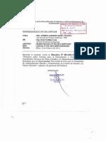 Directiva Elaboracion de Expediente
