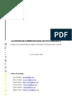 Intelligence économique- Étude Carrefour