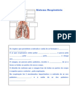 3º Ano-sistema Respiratorio