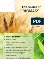 The Basics of Biomass.pptx