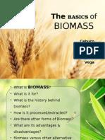 The Basics of Biomass.pptx