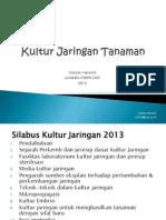 Kultur Jaringan _ Ppt
