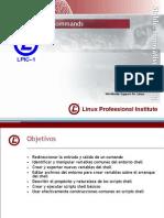 LPI - 101 cap4