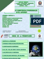 Webinar Como Evaluar Competencias Profesionales en Educacion Superior