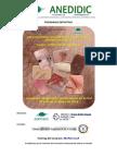 PROGRAMA_XIII Congreso Nacional Enfermería Dermatológica_2015