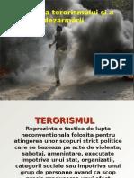 64798073-Terorism-PPT