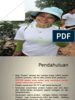 proteinppt-140326213925-phpapp02