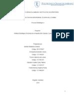 Proyecto Proceso Estratégico 1 Primera Entrega.