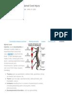 Nursing Care Plan - Spinal Cord Injury - Nursing Crib