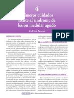 Lesión Medular 2010