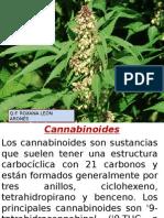 Cannabinoid Es