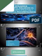 Concepto Evaluacion Del Coeficiente Intelectual y Alteraciones Psicopatologicas