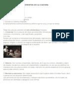 Características y Elementos de La Cultura