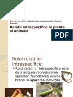 Relatii Intraspecifice La Plante Si Animale