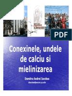 CURS-CarolDavila2009.pdf