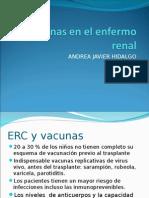 vacunas en el enfermo renal.ppt