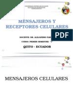 Mensajeros y Receptores Celulares 1 (1) (1) (1)