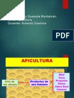 Apicultura 1