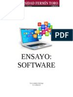 Ensayo sobre el software