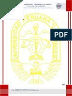 Informe Tallerx-gravedad Especifica a.fino
