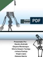 Histología Del Sistema Óseo