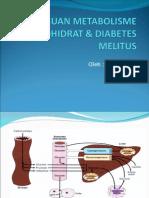 Patofisiologi diabetes mellitus pa pais