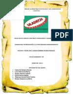 ACTIVIDAD_GRUPAL_RSU_CONTABILIDAD_GUBERNAMENTAL.pdf