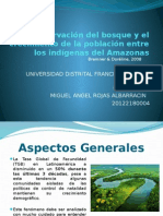 La Conservación Del Bosque y El Crecimiento De