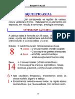 ANATOMIA I - Esqueleto Axial Osteologia
