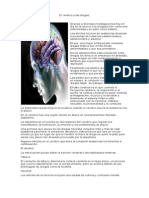 El Cerebro y Las Drogas
