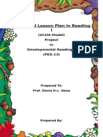 Cami Cat and Cuckoo Bird Lesson Plan Detailed Project