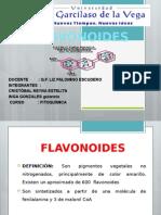 expo-flavonoides-1.pptx