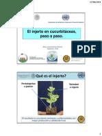El injerto en cucurbitaceas paso a paso (Huitron).pdf