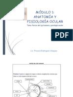 Patología Ocular