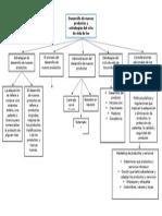 Capítulo 9 Desarrollo de Nuevos Productos y Estrategias Del Ciclo de Vida de Los Productos