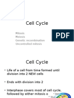 7 Cell Cycle