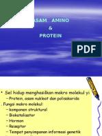 Biokimia Asam Amino