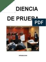 AUDIENCIA DE PRUEBA.docx