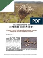 Oleo de Semente de Cenoura