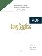 biologia bases geneticas