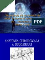 Pancreas.ppt