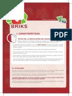 Carpeta Del Reciclaje - Ficha - BRIKS_v_2_AF (1)