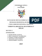 Gerencia Regional de Energia y Minas Infome