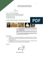 Aula 1 Estetica e Hist Da Arte RESUMO 14.08.2014