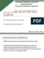 sindromedeintestinocorto-130225001939-phpapp01